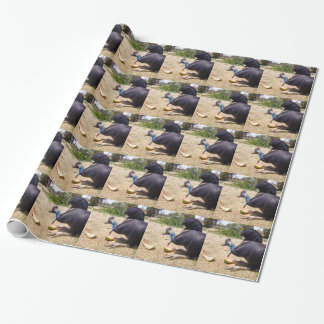 Cassowary_Eating_Melons,_ Wrapping Paper