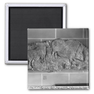 Cast of a frieze of animals from Le Roc de Sers 2 Inch Square Magnet