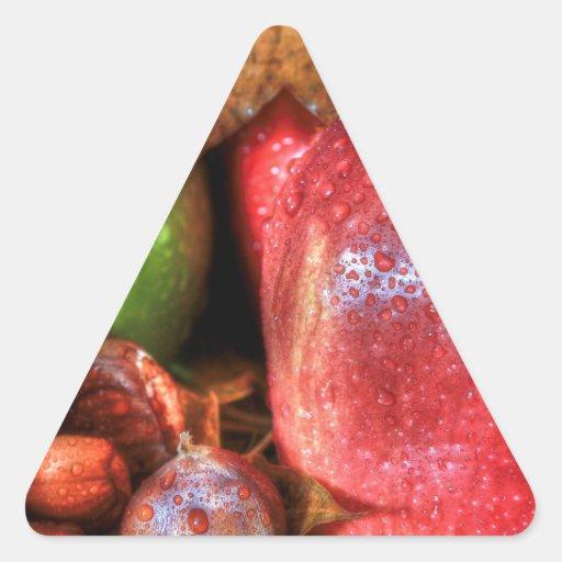 Castañas de Apple Pegatina Triangular