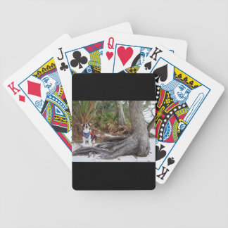 Castaway Bicycle Playing Cards