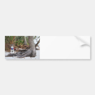 Castaway Bumper Sticker