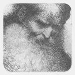 Castiglione - cabeza de un viejo hombre barbudo pegatina cuadradas personalizadas