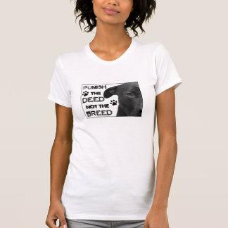 ¡Castigue el HECHO no la RAZA - las derechas de Pi Camiseta
