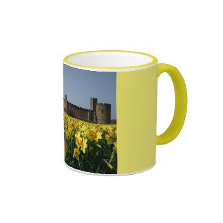 Castillo de Alnwick de los jardines Taza De Dos Colores