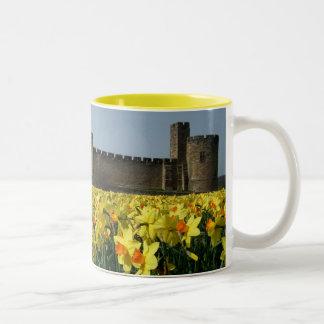 Castillo de Alnwick de los jardines Taza De Dos Tonos