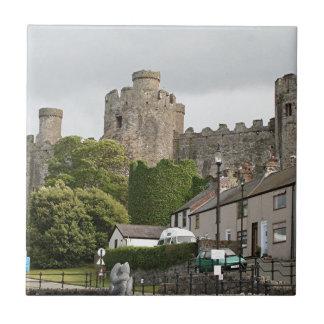 Castillo de Conwy, País de Gales, Reino Unido Tejas