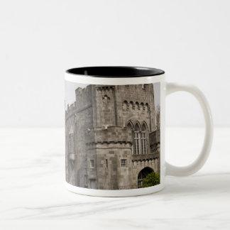 Castillo de Kilkenny condado Kilkenny Irlanda Tazas