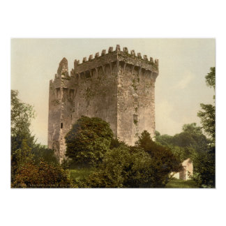 Castillo de la lisonja, corcho del condado póster