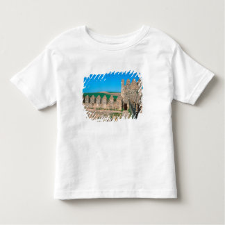 Castillo de Las Aguzaderas is a castle with a Tee Shirt