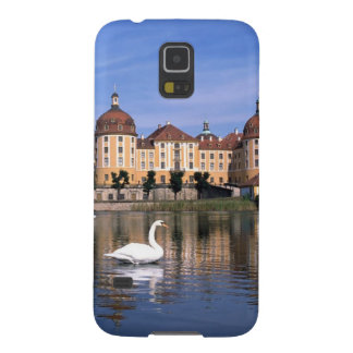 Castillo de Moritzburg Funda Galaxy S5