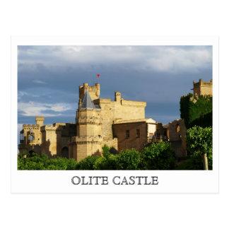 Castillo de Olite Tarjeta Postal