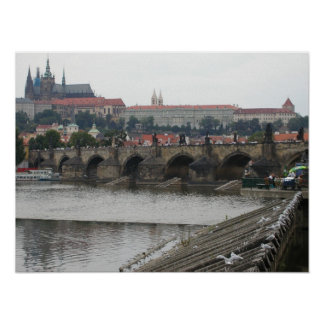 Castillo de Praga Póster