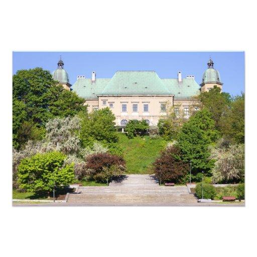 Castillo de Ujazdowski en Varsovia Cojinete
