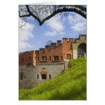 Castillo de Wawel, Kraków, Polonia Felicitaciones