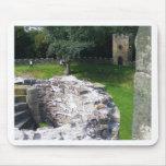 Castillo de Wentworth Alfombrilla De Ratones