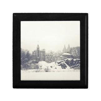 Castillo del belvedere en el invierno en Central P Joyero Cuadrado Pequeño