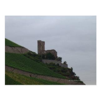 Castillo del Rin Tarjetas Postales