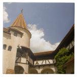 Castillo del siglo XIII del salvado (el castillo d Azulejo Cuadrado Grande