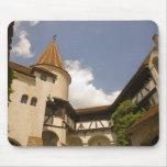 Castillo del siglo XIII del salvado (el castillo d Tapete De Ratón