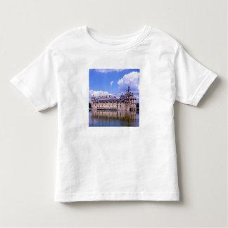 Castillo francés Chantilly, Oise, Francia Playeras