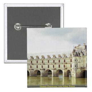 Castillo francés Chenonceau el valle del Loira F Pins