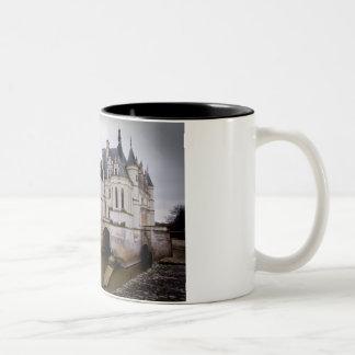 Castillo francés Chenonceau Taza De Dos Tonos