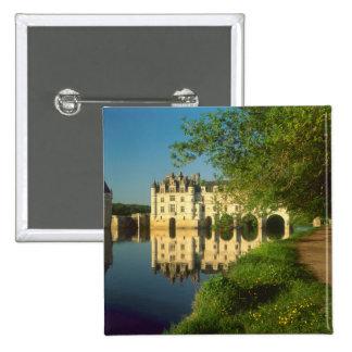 Castillo francés de Chenonceau el valle del Loira Pin