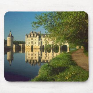 Castillo francés de Chenonceau el valle del Loira Tapetes De Raton