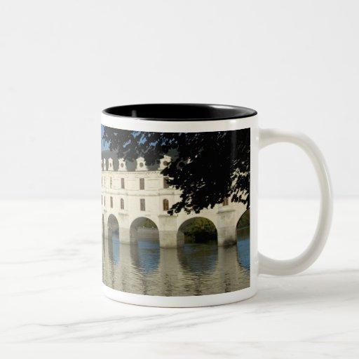Castillo francés de Chenonceau, río Cher, Taza De Dos Tonos