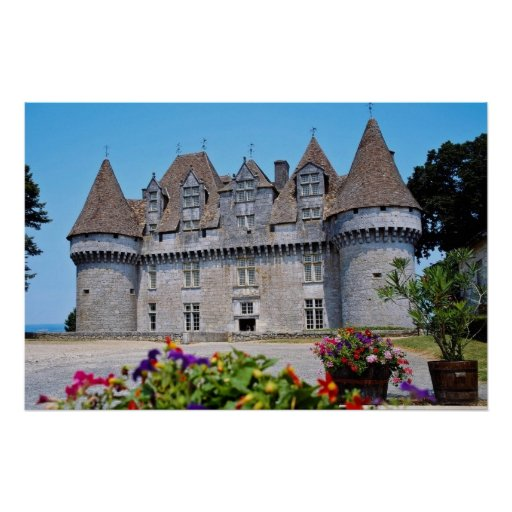 Castillo francés rosado con las flores, flujo de M Póster