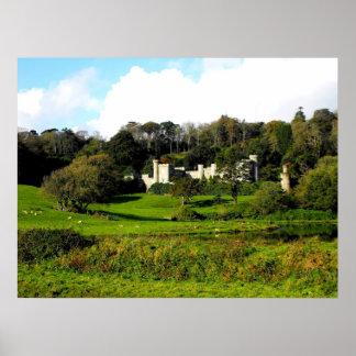 Castillo y jardines de Caerhays Póster