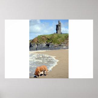 castillo y perro atlánticos salvajes de la manera póster