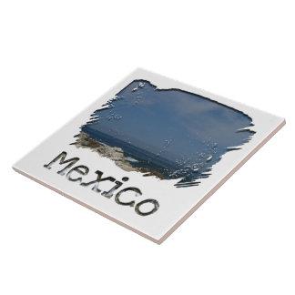 Castillos en la arena Recuerdo de México Tejas