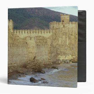 Castle, built by the Crusaders Binder