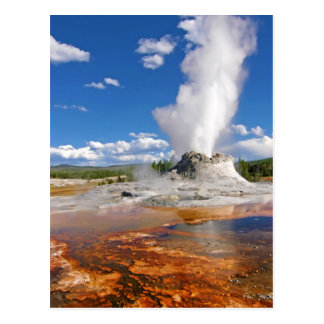 Castle Geyser Eruption Yellowstone National Park. Postcard