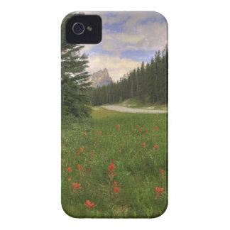 Castle Mountain Banff iPhone 4 Cases