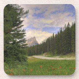 Castle Mountain Banff Drink Coaster