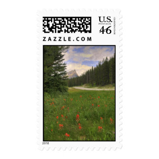 Castle Mountain Banff Postage Stamps