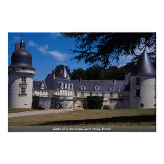 Castle of Chenonceau, Loire Valley, France Poster