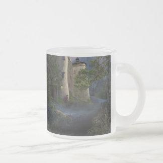 Castle of insane - Mug