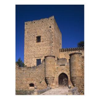 Castle Pedraza, Castile Leon, Spain 2 Postcard
