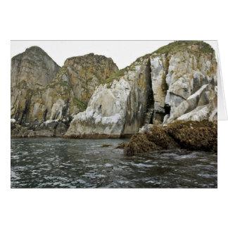 Castle Rock en las islas de Shumagin Tarjeton