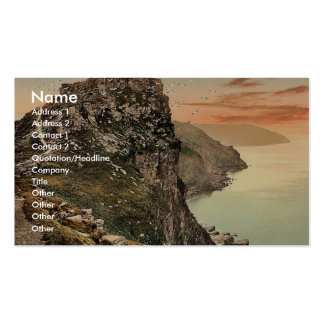 Castle Rock in the Valley of Rocks, Lynton and Lyn Double-Sided Standard Business Cards (Pack Of 100)