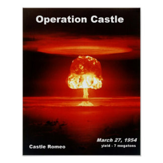 Castle_Romeo Posters
