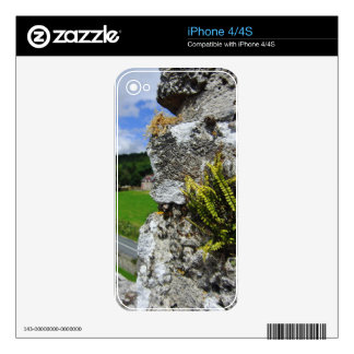 Castle Wall Fern Decals For The iPhone 4