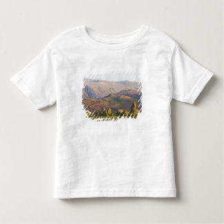 Castlerigg Stone Circle, Lake District, Cumbria, 2 Toddler T-shirt