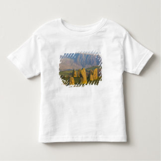 Castlerigg Stone Circle, Lake District, Cumbria, Toddler T-shirt