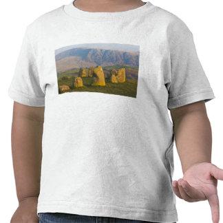 Castlerigg Stone Circle Lake District Cumbria T-shirt