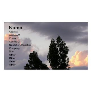 Castles in the Sky Double-Sided Standard Business Cards (Pack Of 100)