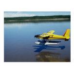 Castor, aterrizando en el río postal